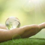 Aonde Começa a Sustentabilidade?